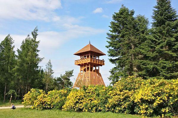 Esküvői fotózás helyszín Jeli Arborétum